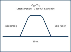 functional-graphs2